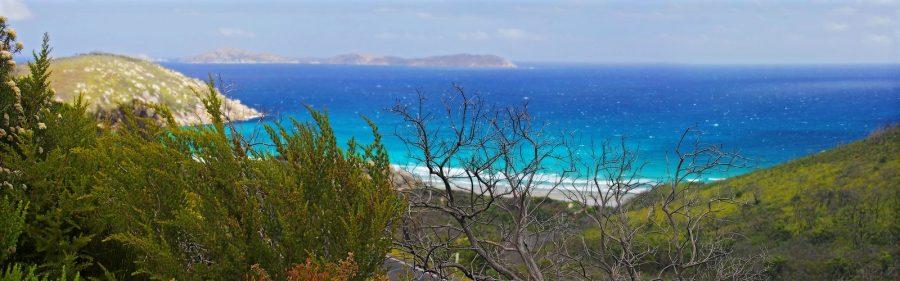 Norman-Bay-Wilsons-Prom-panorama (3)