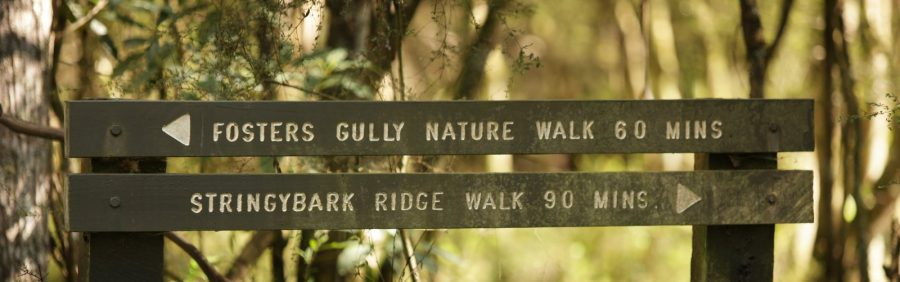 Fosters Gully Nature Walk